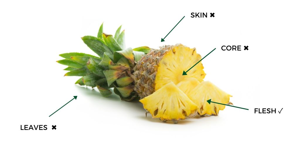 Can Dogs Eat Pineapple? Is it safe? | AnyDoggie.com